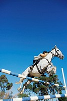 Low angle view of a person riding horse and jumping over a barrier