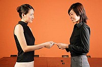 Female executives exchanging namecards