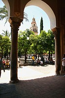 Courtyard and minaret tower of the Great Mosque. Córdoba. Andalusia, Spain