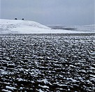 Snowy arable land