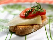 Cheese, tomatoes and parsley on a toast