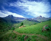 Scenic Amphitheatre, Royal Natal National Park, Drakensberg, South Africa
