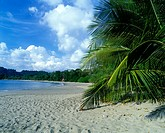 Scenic Espadilla Sur beach, Manuel Antonio National Park, Costa Rica.
