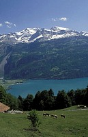 Mountains and lake, Brienz, Switzerland