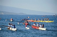 USA, Hawaii, Kailua Kona, outrigger canoes heading to race stage