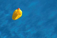 Rubber duck in water, overhead view