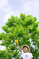 Boy (5-7) holding up flowers, low angle view