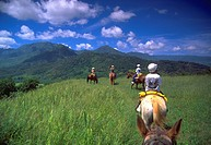 Horseback Riding, Princeville, Hanalei,  Kauai, Hawaii, USA