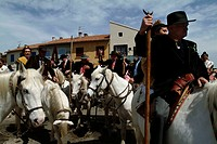 Group of people riding horses, Provence, France