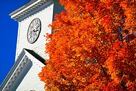 Greenfield, New Hampshire, New England--abstract church steeple, large tree w/ red/orange leaves FG, fall foliage