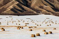 Qu'Appelle River Valley with light snow and hay bales. Saskatchewan, Canada