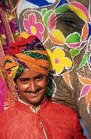 Jaipur, Decorated Elephant