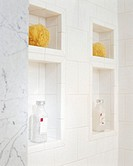 Built_in Niches in Wall of Shower Stall