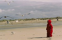 Sandy beach, girls, rainwear,  Observation, seagulls, flight  Child, toddler, 2 years, rainwear, red, rain suit, hood, childhood, experience, vacation...