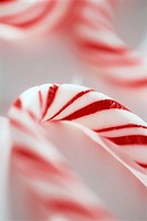 Close-up of Candy Cane