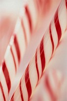 Close-up of Candy Canes