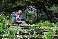 Woman Watering Plants in Plant Nursery