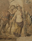 10202890, Cyprus, Paphos, villa, ground, bottom, mosaic, woman, halbakt, centaurs, harp, damages, house, home, of Dionysos, The