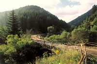 Bulgaria, Rhodopengebirge, street,  Bridge  Europe, southeast Europe, Balkans peninsula, Republika Balgarija, South Bulgaria, Rhodopen, mountains, mou...