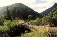 Bulgaria, Rhodopengebirge, street,  Bridge  Europe, southeast Europe, Balkans peninsula, Republika Balgarija, South Bulgaria, Rhodopen, mountains, mou...