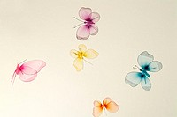 Butterflie, mobile,   Toy, decoration, living space decoration, beauty, merrily, cheerfully, hovers, flie, toy butterflie, background brightly, quietl...