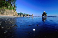 scenery, landscape, Ruby Beach, Olympic, national park, park, sea, coast, ocean, Pacific, beach, seashore, sand beach