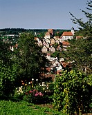 Germany, Baden-Württemberg,  Elderly steep track, view at the city,   Series, Europe, Black forest, city, sight, houses, residences, church, season, s...