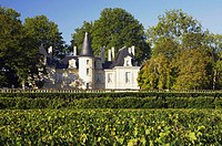France, Aquitanien, Medoc, Pauillac, Chateau Pichon Longueville, vineyard,  Detail,  Series, close to Pauillac, buildings, palace, built nature 1850, ...