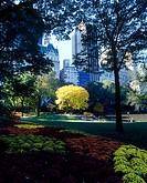 Fall foliage, The pond, Central park, Manhattan, New York, USA.