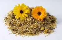 Dried, Garden, Marigold, Calendula, officinalis