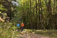 Couple nordic walking in forest