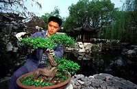 China, Shanghai city, gardener in Yuyuan gardens, building of the gardens took almost 20 years in the 16th century
