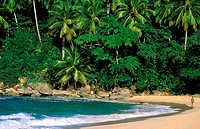 Dominican Republic, Puerto Plata province, Rio San Juan, Playa Grande beach