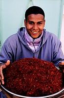 Morocco, Anti Atlas, Taliouine, Suktana cooperative, saffron
