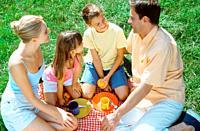 High angle view of family having picnic