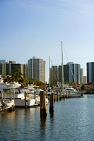 Boats moored at a dock, Miami, Florida, USA