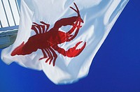 Lobster painted on a flag