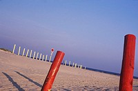 Wooden posts on the beach, Texas, USA