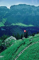 High angle view of a flag on a mountain, Swiss Alps, Switzerland