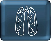 Lungs on blue background