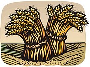 Drawing of bunches of wheat