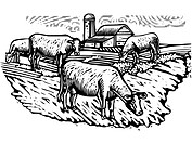 Black and white illustration of cows grazing on a pasture with a building in the background