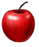 A shiny red apple