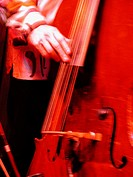 A Jazz Musician Plays Bass In A Red Atmosphere. Chicago