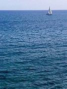 A little white sailboat on horizon; calm sea