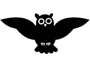 Black and white drawing of an owl
