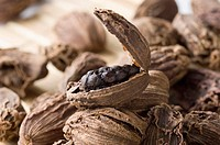 Close-up of Black Cardamoms (thumbnail)