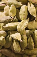 Close-up of Cardamoms (thumbnail)