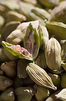 Close-up of Cardamoms