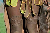 Menschen, Männer, Sudan, Toposa-Mann, Detail, Teile von Lendenschurz aus Tierfellen und mit Glasperlen bestickt, Narben als Schmuck oberhalb der Knie,...